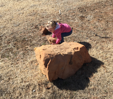 Older kids got good looks at new birds; younger kids got to pick up big rocks: win-win!