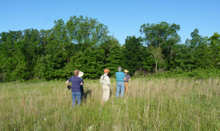 Kevin Wilson, Leslie Elmore, Les Imboden, John Couch, and Dwayne Elmore track a Painted Bunting.