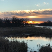 Sunrise from Stillwater Creek. Photo by Tim O'Connell.