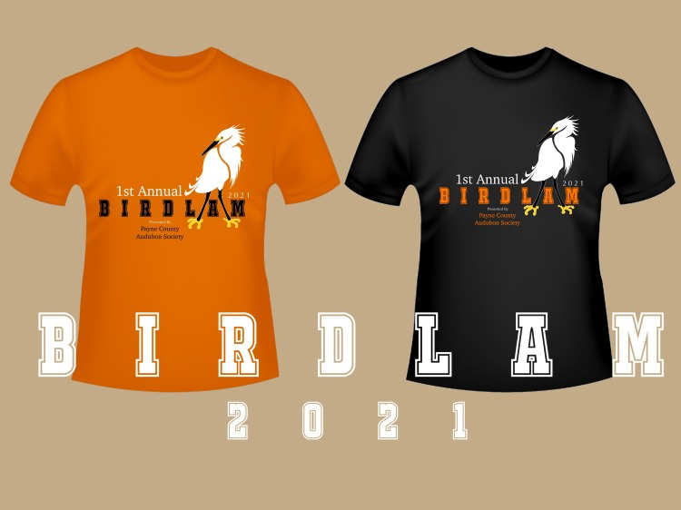 Image of orange and black t-shirt options